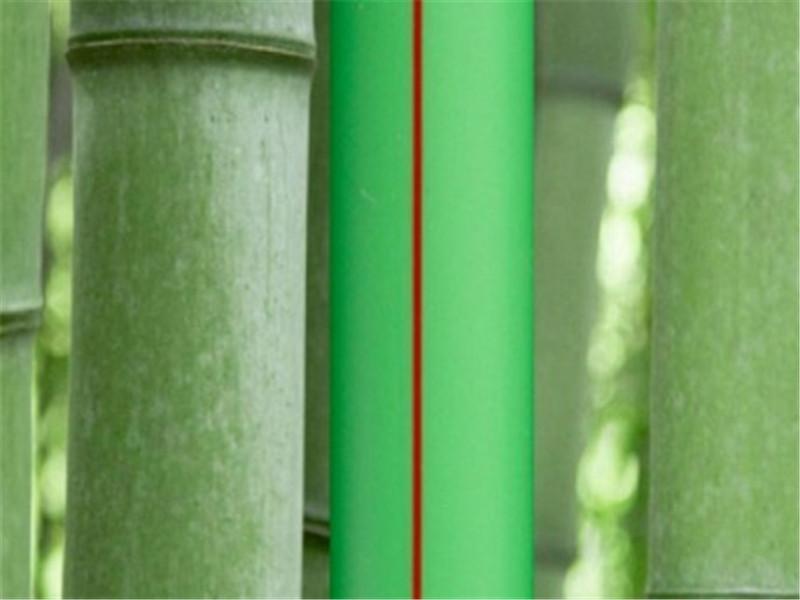 康泰集团:承载社会责任,践行绿色发展