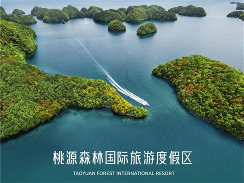 """200亿打造13平方公里""""桃源森林国际旅游度假区"""" 世界级超级IP将启幕"""